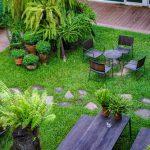 Jak założyć własny ogród